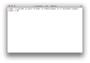"Running the ""useradd"" command."